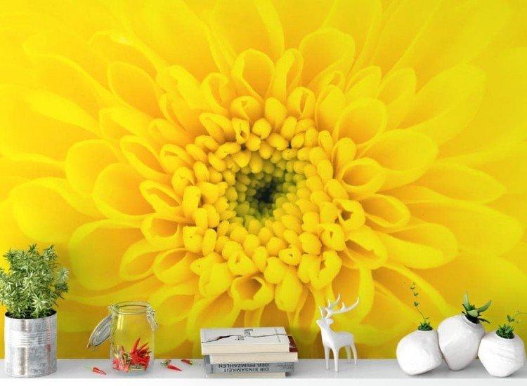 Цветя-Фототапет Жълто цвете