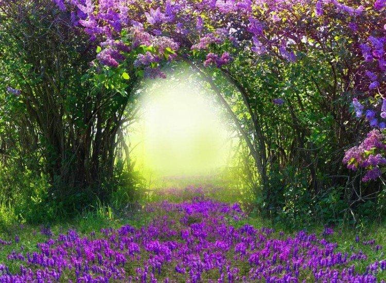 Пейзажи и природа-Фототапет Магическа пролет