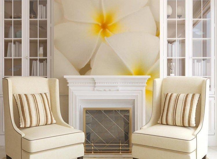 Цветя-Фототапет Бели цветчета