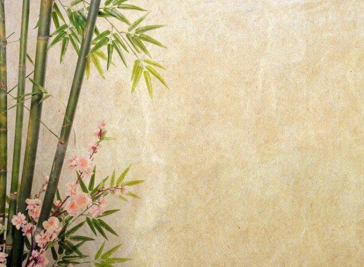 Растения-Фототапет Бамбук и цветове върху стара хартия