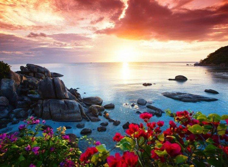 Морски и тропически-Фототапет Красива сутрин в Кох Самуи, Тайланд