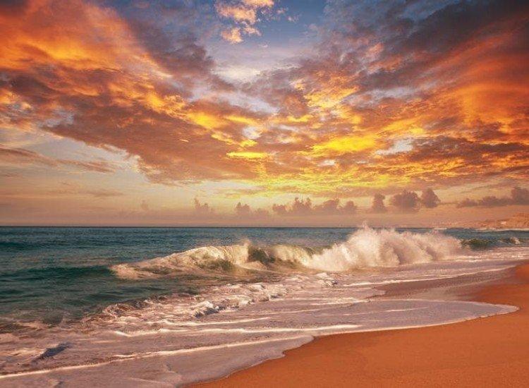 Морски и тропически-Фототапет Морски залез