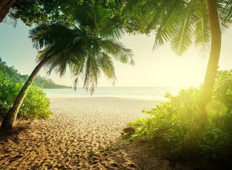 Морски и тропически-Фототапет Сейшелски залез