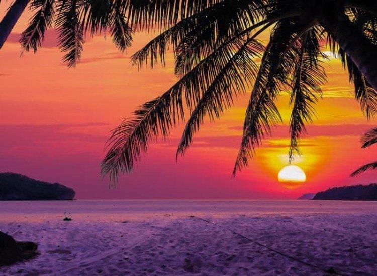 Морски и тропически-Фототапет Изгрев между кокосови дървета