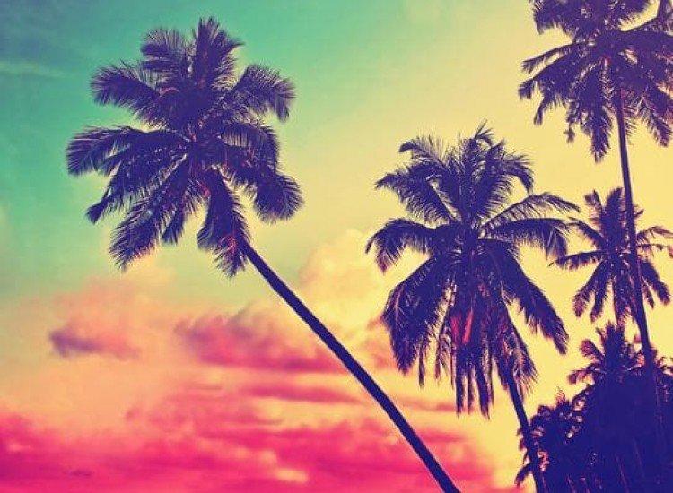 Морски и тропически-Фототапет Красив тропически плаж