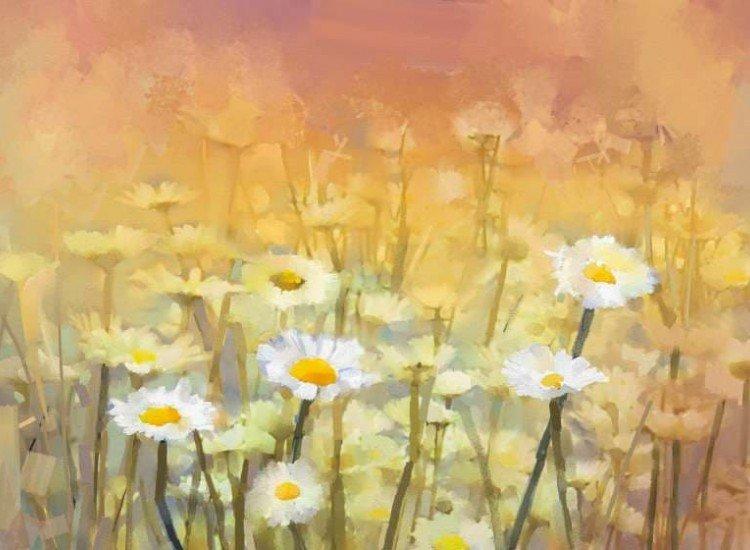 Цветя-Фототапет Винтидж живопис с маргаритки