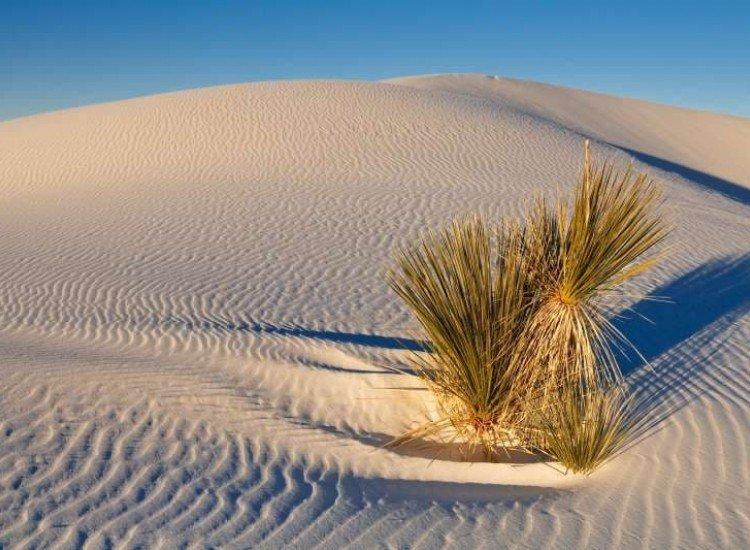 Пейзажи и природа-Фототапет Пясъчна дюна в Ню Мексико