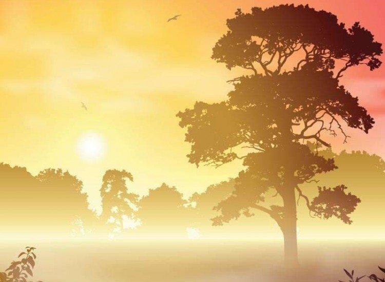 Пейзажи и природа-Фототапет Мъгляв горски пейзаж