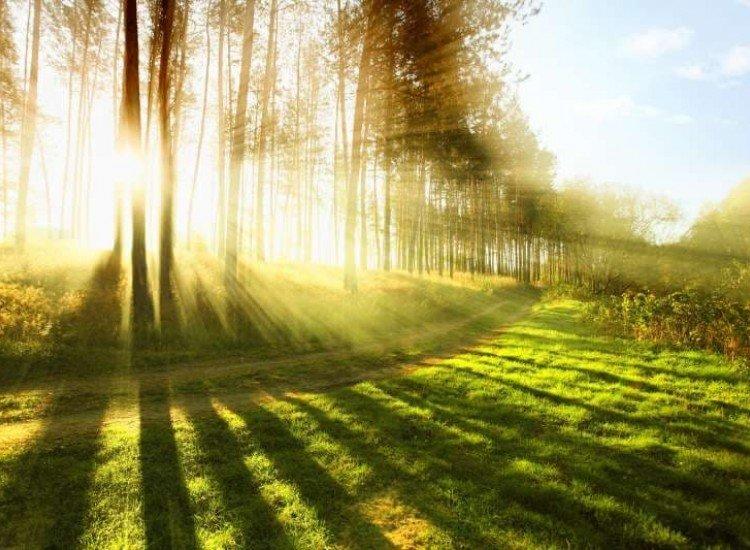 Пейзажи и природа-Фототапет Слънчева гора