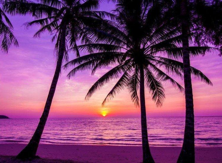 Морски и тропически-Фототапет Залез на плажа