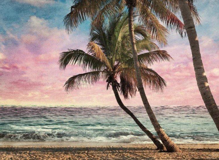 Морски и тропически-Фототапет Тропически плаж по залез