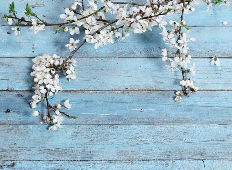 Цветя-Фототапет Цветя на дървен фон