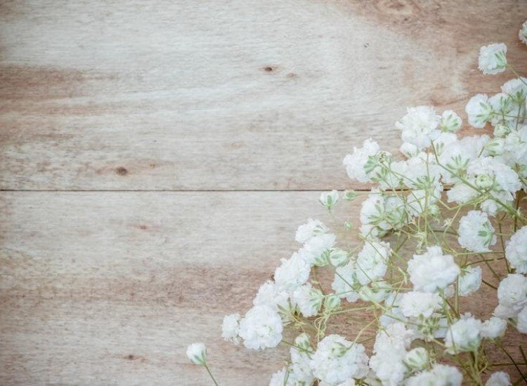 Цветя-Фототапет Бели цветове на дървен фон