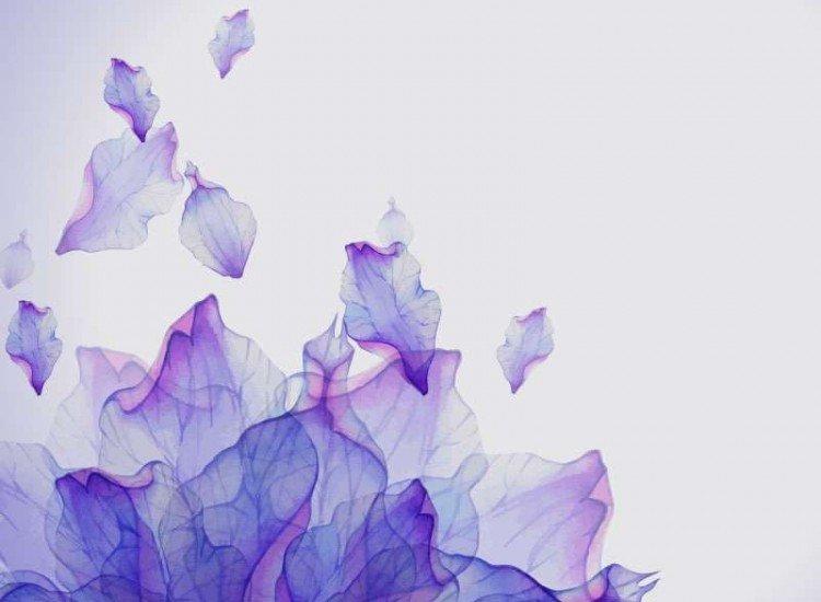 Цветя-Фототапет Акварелни венчелистчета