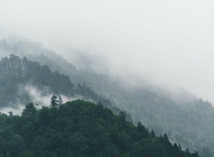 Фототапет Мъглива гора - Фототапети БГ