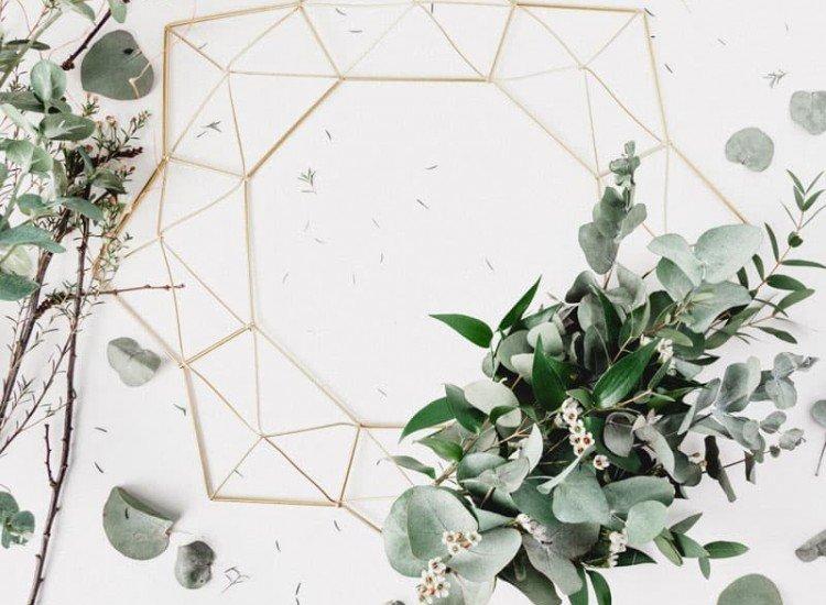 Растения-Фототапет Винтидж клони и листа