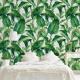 Фототапет Тропически листа