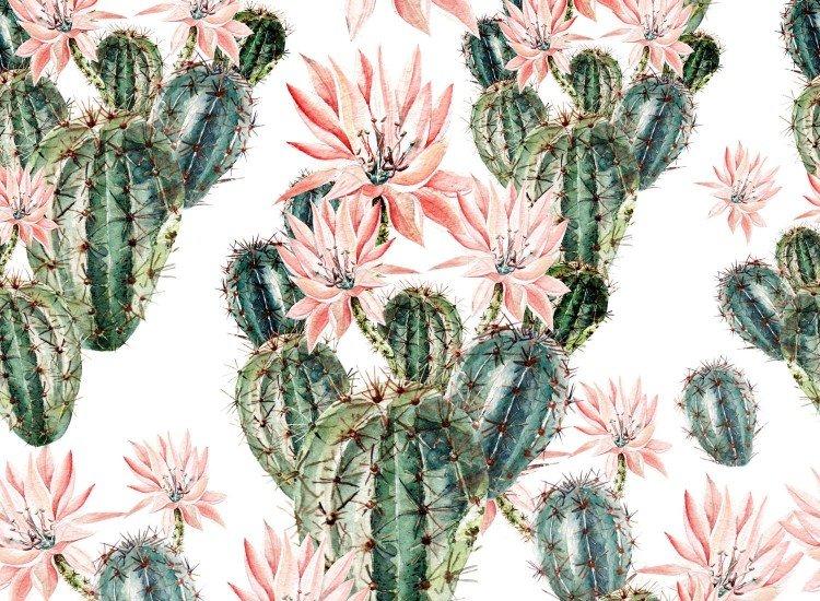 Тапети-Дизайнерски Тапет Cactus Dibujo
